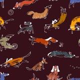 Hand gezeichnete nette Hunde des Gekritzels Nahtloses Muster mit plaing Haustieren Stockfoto