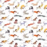 Hand gezeichnete nette Hunde des Gekritzels Nahtloses Muster mit plaing Haustieren Lizenzfreies Stockbild