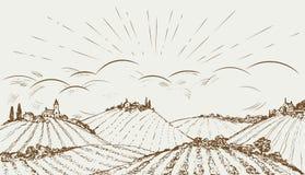 Hand gezeichnete panoramische breite Landschaft des ländlichen Feldes Weinlesevektorillustration Stockbild