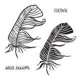 Hand gezeichnete Schattenbilder von Federn in Schwarzweiss Auch im corel abgehobenen Betrag Stockfotos