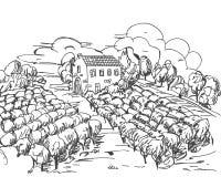 Hand gezeichnete Schwarzweiss-Weinberglandschaft lizenzfreie stockfotos