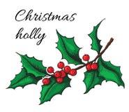 Hand gezeichnete Stechpalme Weihnachtsmistelzweiganlage Lizenzfreie Stockfotos