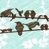 Hand gezeichnete Vögel Lizenzfreie Stockbilder
