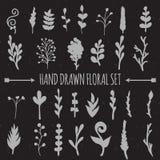 Hand gezeichnete Vektor-Dekorations-Sammlung Stockbilder