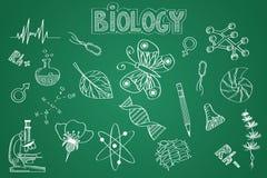 Hand gezeichneter Biologiesatz Kreide auf der Tafel Lizenzfreies Stockfoto