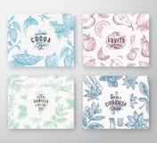 Hand gezeichneter Frucht-, Kakaobohne-, Minzen-, Nuss-und Gewürz-Karten-Satz Abstrakte Vektor-Skizzen-Muster-Hintergrund-Sammlung Stockfotografie