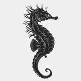 Hand gezeichneter grafischer Seahorse Auch im corel abgehobenen Betrag Tätowierungsskizze Rumflaschen-, -silber- und -goldmünzen, Vektor Abbildung