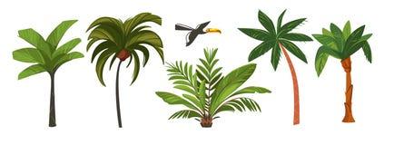 Hand gezeichneter Illustrations-Kunstsammlungssatz der Vektorzusammenfassungskarikatur-Sommerzeit grafischer mit exotischen tropi Lizenzfreie Stockbilder