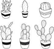 Hand gezeichneter Kaktus-Satz von 6 in den Töpfen Stockbild