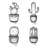Hand gezeichneter Kaktussatz Gekritzel mit Blumen in den Töpfen Vector botanische Sätze mit netten Hausinnenraumanlagen Lizenzfreie Stockfotografie