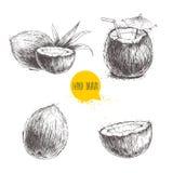 Hand gezeichneter Kokosnusssatz Cocktail auf weißem Hintergrund Stockbild