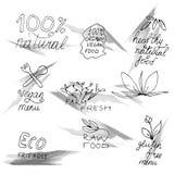 Hand gezeichneter Satz gesundes biologisches Lebensmittel Lizenzfreie Stockbilder