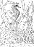 Hand gezeichneter Seahorse-erwachsener Farbton Stockbild