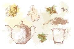 Hand gezeichneter Teesatz auf Farbenhintergrund Lizenzfreie Stockbilder