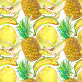 Hand gezeichnetes exotisches nahtloses Muster der tropischen Früchte Lizenzfreie Stockfotos