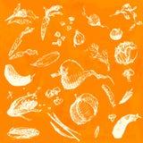 Hand gezeichnetes Gekritzellebensmittel, Gemüse Weiße Gegenstände, nahtloser Hintergrund des orange Aquarells Designillustration  Stockbilder
