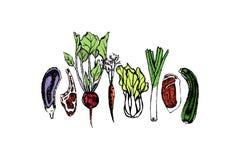 Hand gezeichnetes Gemüse und Fleisch Stockbilder