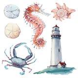 Hand gezeichnetes Meer-clipart Stockfotos