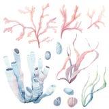 Hand gezeichnetes Meer-clipart Lizenzfreie Stockbilder