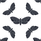 Hand gezeichnetes nahtloses Muster des Falkemotten-Vektors Lizenzfreie Stockbilder