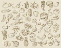 Hand gezeichnetes Obst und Gemüse Stockfoto