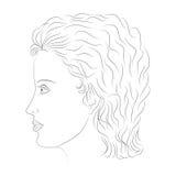 Hand gezeichnetes weibliches Gesicht im Profil Skizzen-Zeichnungs-schöne Dame mit den gelockten Haaren Stockfoto