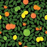 Hand gezeichnetes Zitrusfruchtmuster Stockfotografie