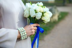 Bunch of tulips in woman`s hands. bouquet of tulips in a woman`s hands, royalty free stock photos