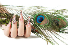 Hand of the girl with a peacock feather. Hand of the girl with beautiful nails hold a peacock feather, on a white background stock photography