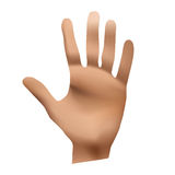 Hand. Give 5 icon, isolated on white background, vector illustration Stock Photos