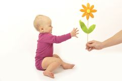 Hand gives flower to baby Stock Images