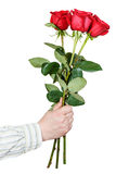 Hand giving bouquet of three red roses isolated Stock Photos