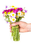 Hand giving bouquet of wildflowers Stock Images