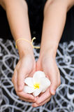 Hand giving exotic flowers Royalty Free Stock Photography