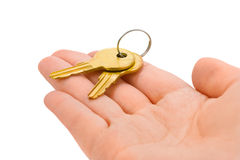 Hand giving keys. Hand and bunch of keys isolated on white background Stock Image