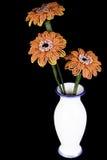 Hand - gjord blommapärla för tre gerbera i en vas arkivbilder