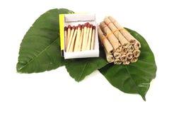 Hand-gjorda tobakcigaretter med matchsticks Royaltyfri Bild