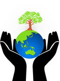 Hand globe tree royalty free illustration