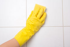 Hand in glove cleaning tile wall Stock Photos