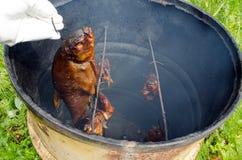 Hand glove hold smoke tench fish smokehouse barrel Royalty Free Stock Photo