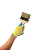 Hand in a glove is holding a brush isolated on white background Stock Photos