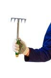 Hand in glove holding garden rake Stock Images