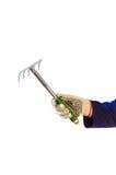 Hand in glove holding garden rake Royalty Free Stock Photography