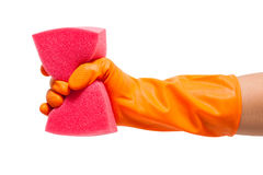 Hand in glove holding sponge, Royalty Free Stock Photography