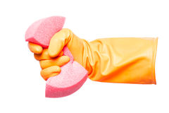 Hand in glove holding sponge, Stock Photos