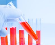 Hand in glove is holding test tube with red liquid in laboratory Stock Photos