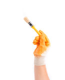 Hand in glove holds brush. Royalty Free Stock Photography