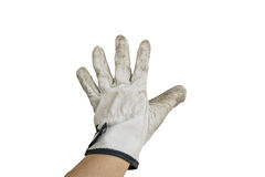 Hand with glove. Isolated backhanded with old glove on white background stock image