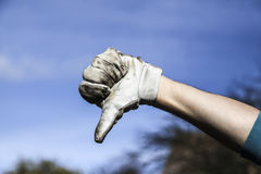 Hand in glove Royalty Free Stock Image