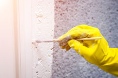 Hand in glove with a paint brush Royalty Free Stock Images